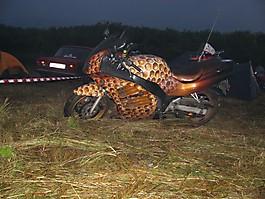 Поездка в Суздаль, июль 2009 :: 0012
